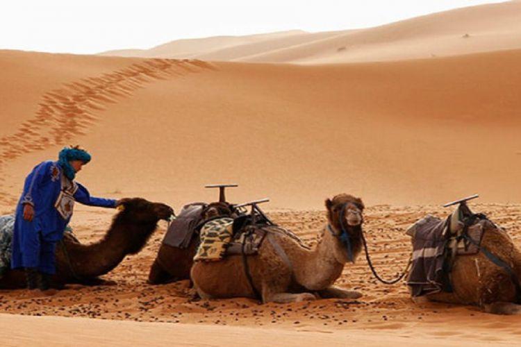 Excursión de 3 días al desierto desde Marrakech