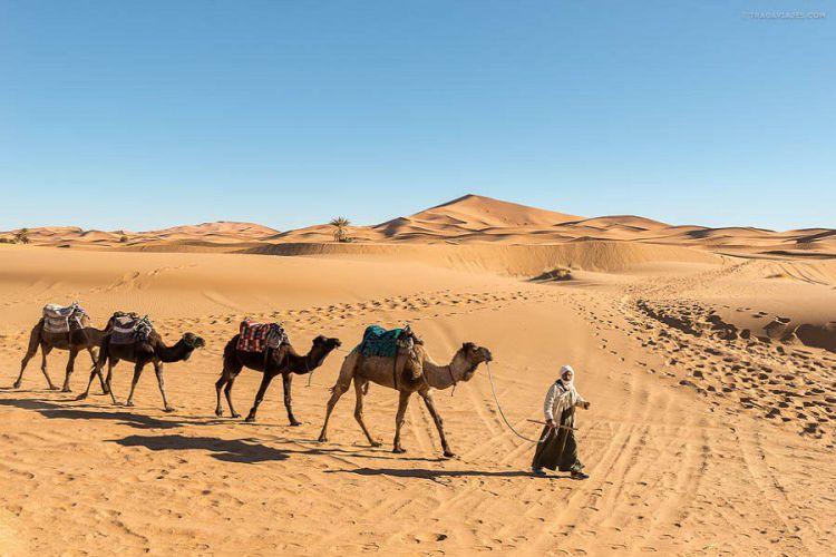 Excursión de 6 días a Merzouga desde Marrakech